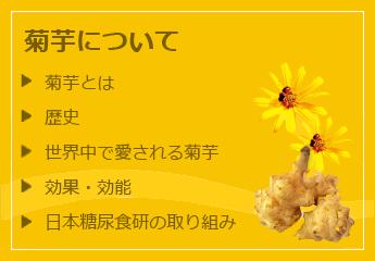 効能 菊芋
